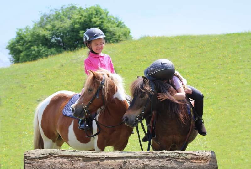 Stage poney printemps 2019